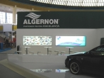Algernon 9