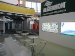Algernon 11