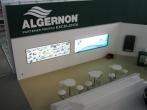Algernon 19