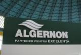 Algernon 26